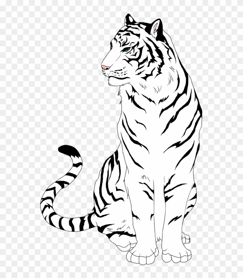 how to draw a tiger rainforest drawing easy at getdrawingscom free for draw a how tiger to