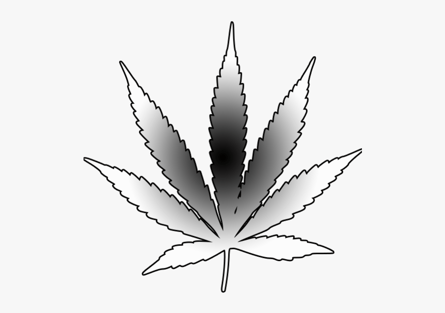 how to draw a weed leaf cannabis leaf drawing png free cannabis leaf drawingpng a how draw to leaf weed