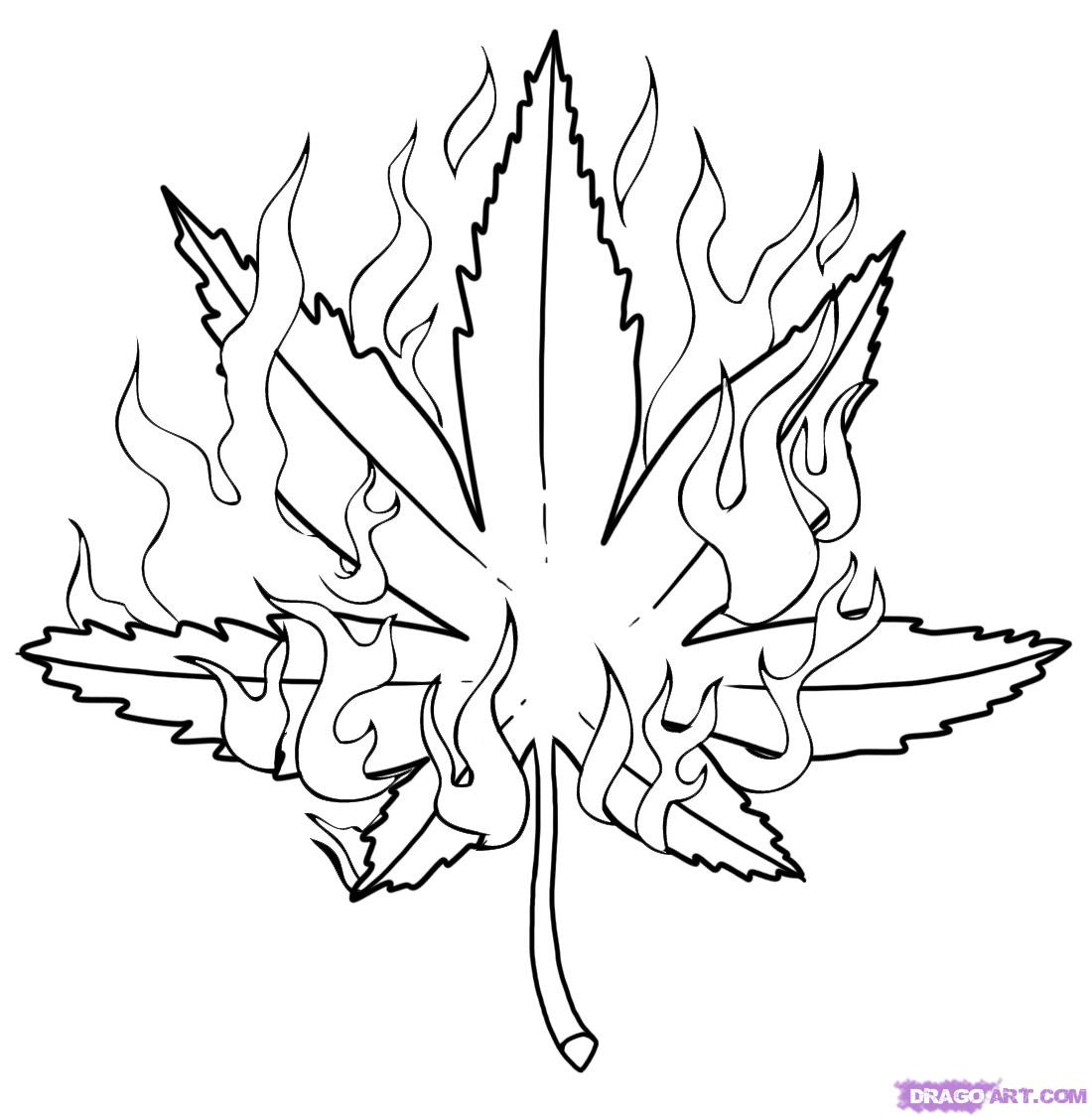 how to draw a weed leaf the best free cannabis coloring page images download from to how a leaf draw weed