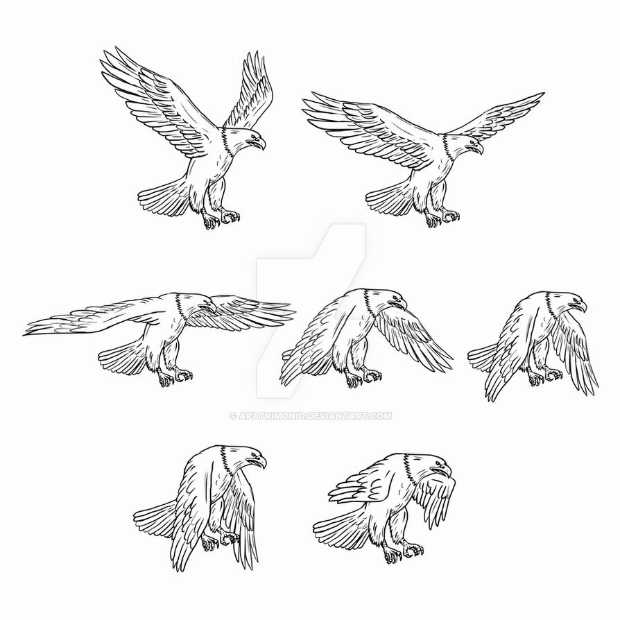 how to draw an eagle flying bald eagle in flight drawing by rita polizzi flying eagle to an how draw