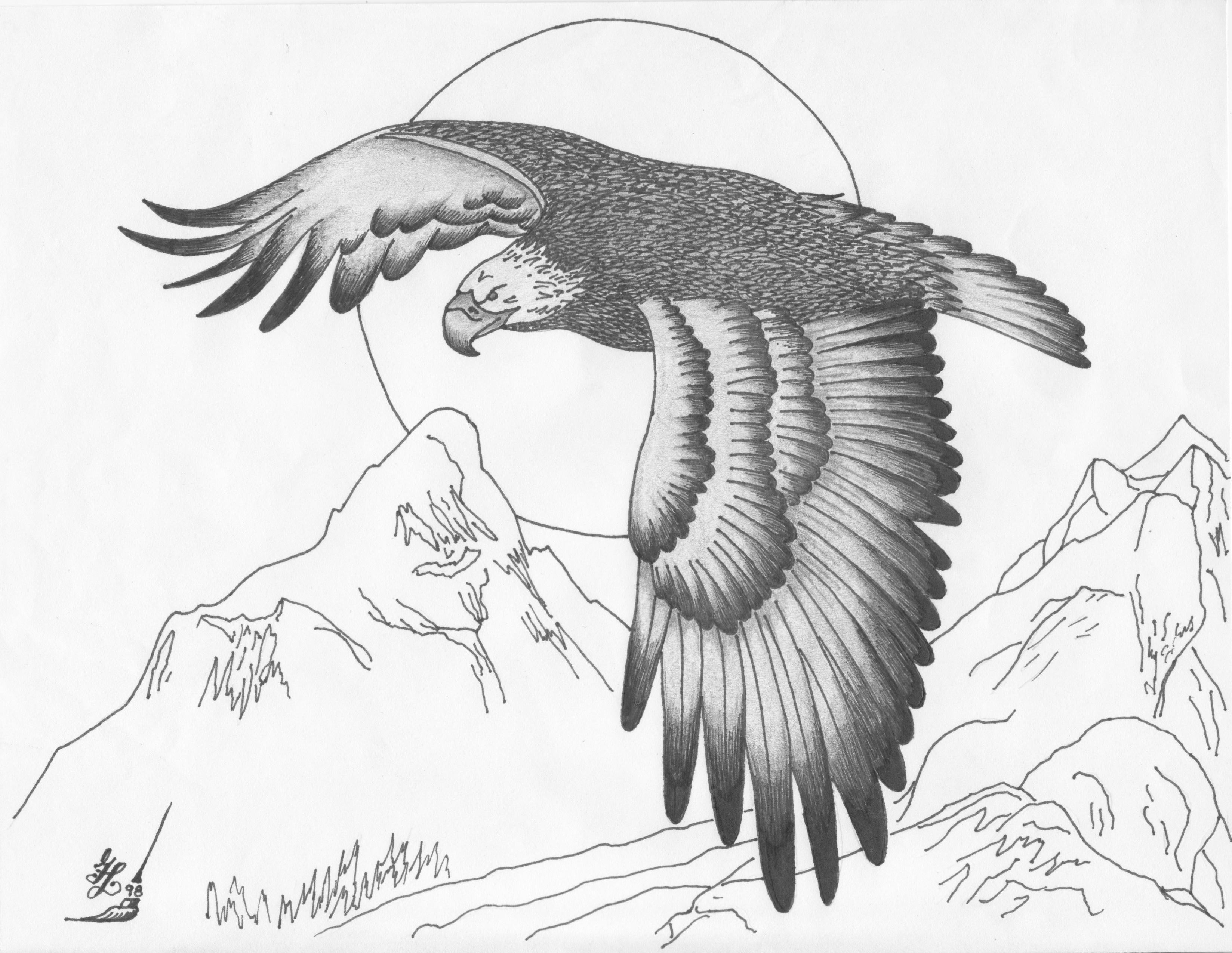 how to draw an eagle flying how to draw a eagle flying drawing art ideas an flying to draw how eagle