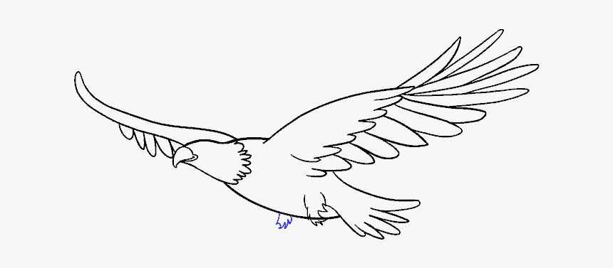how to draw an eagle flying how to draw an eagle flying realistic head easy and flying draw eagle an how to