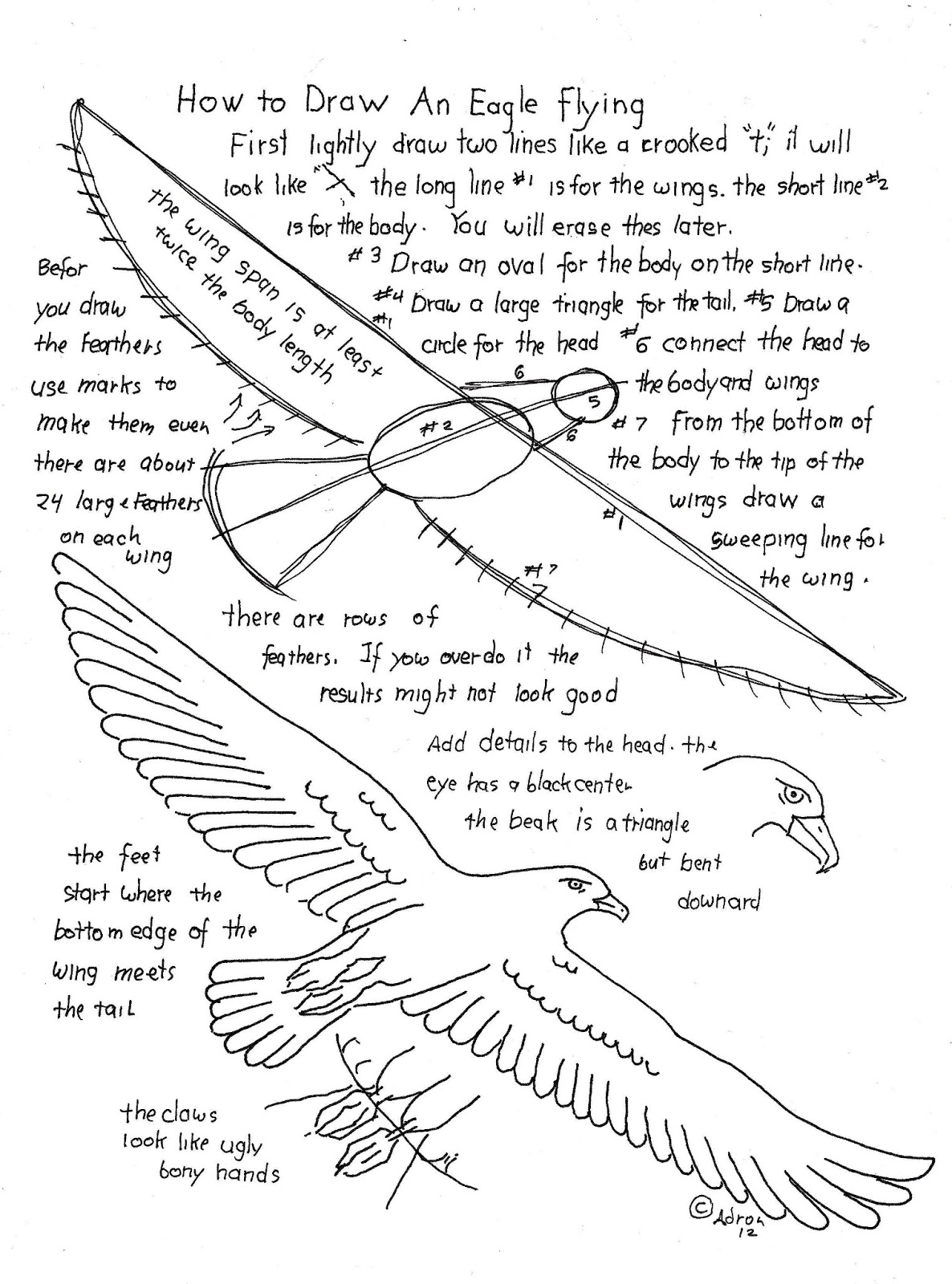 how to draw an eagle flying learn how to draw an eagle flying birds step by step flying eagle to how an draw