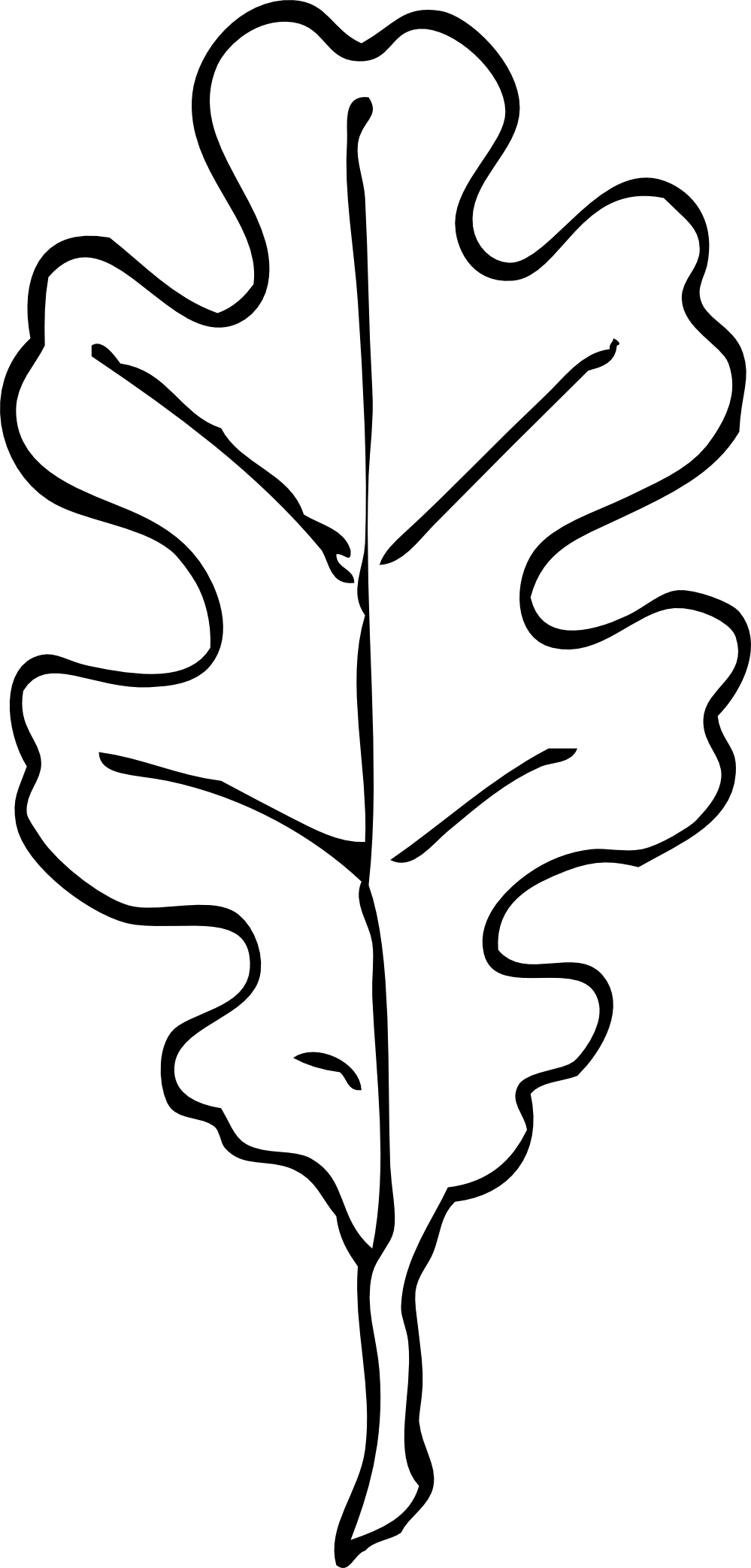 how to draw an oak leaf oak leaf drawing template at getdrawings free download an oak draw to leaf how