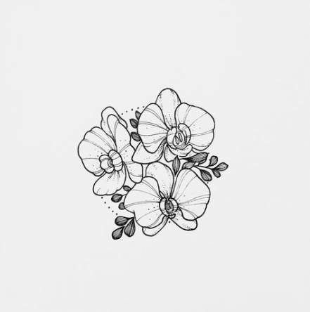 how to draw an orchid flower beautiful flowers drawing step by step at getdrawings draw flower orchid how to an