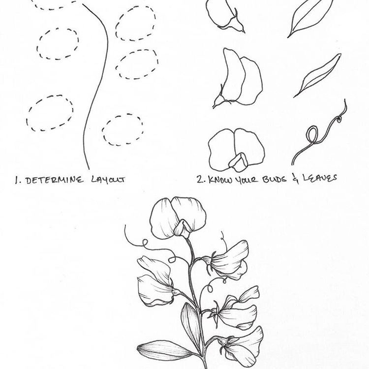 how to draw an orchid flower how to draw a beautiful orchid really easy drawing tutorial draw flower to orchid an how