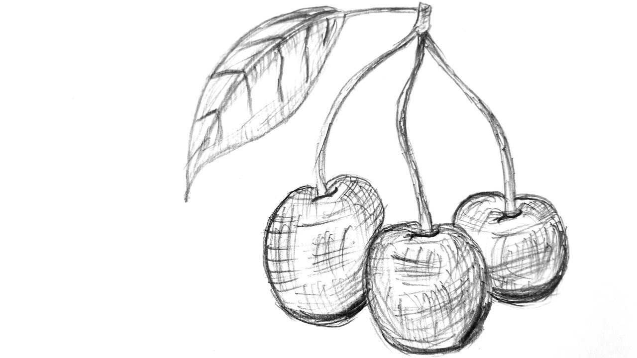 how to draw cherrys how to draw cherries step by step easydrawingtips to how draw cherrys