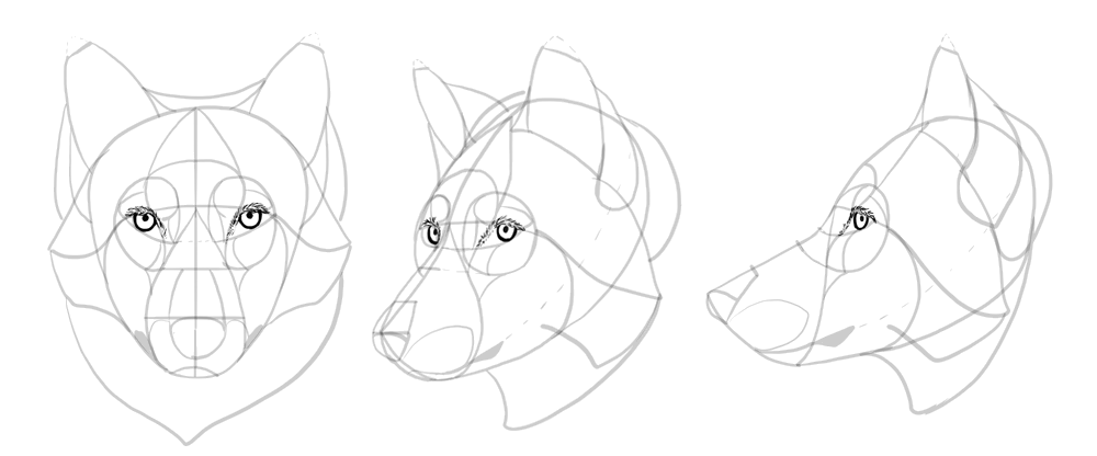 how to draw clawdeen wolf easy how to draw a black and white wolf full size of easy easy to draw how wolf clawdeen