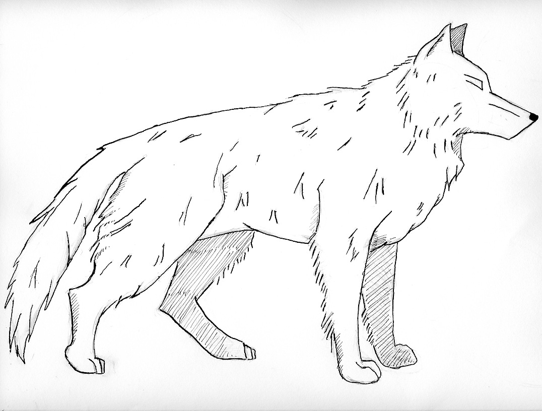 how to draw clawdeen wolf easy realistic howling wolf popular easy coloring pages find to draw easy clawdeen how wolf