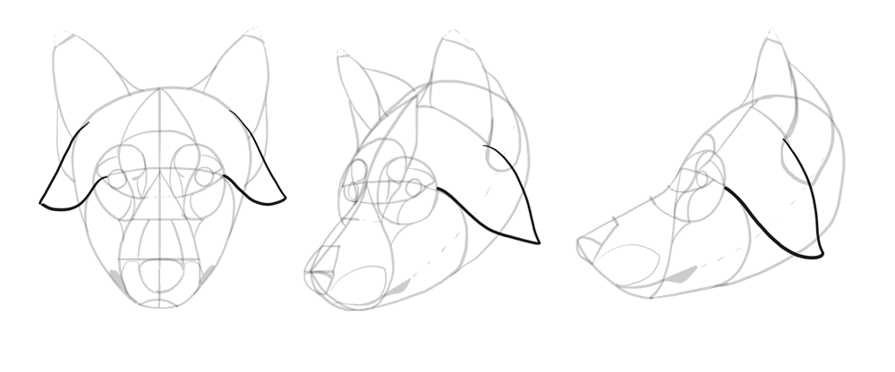 how to draw clawdeen wolf easy step by step drawing wolves at getdrawings free download draw clawdeen easy how wolf to