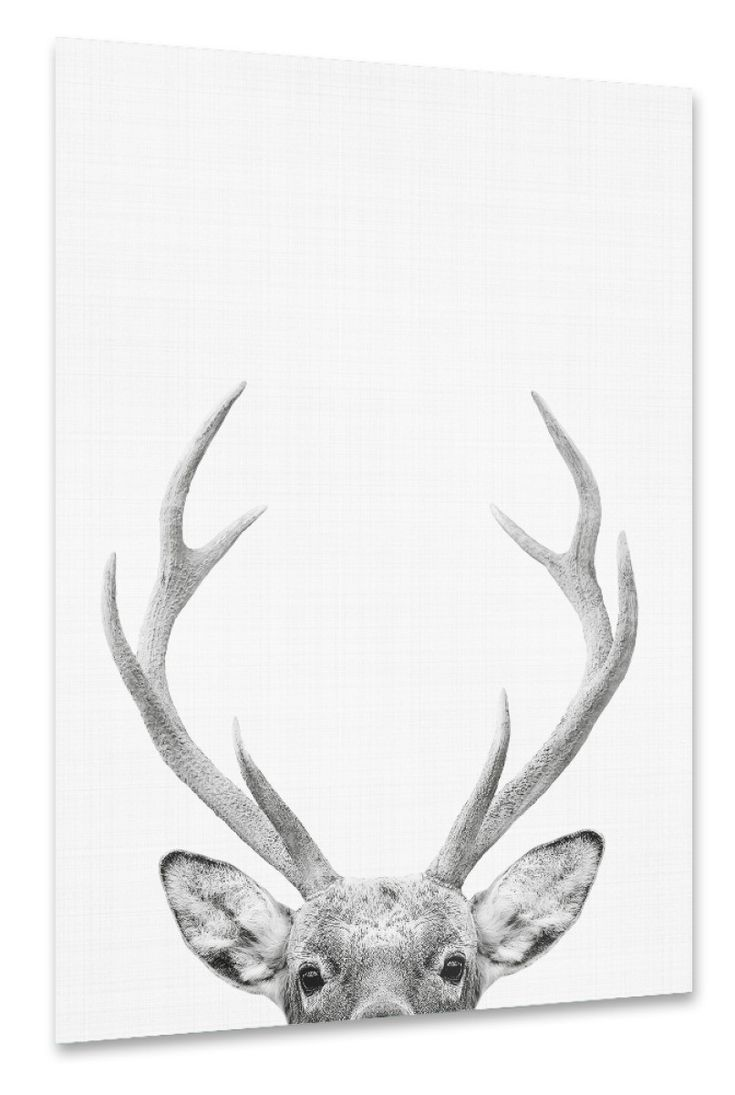 how to draw deer antlers how to draw a deer step by step deer to draw antlers how