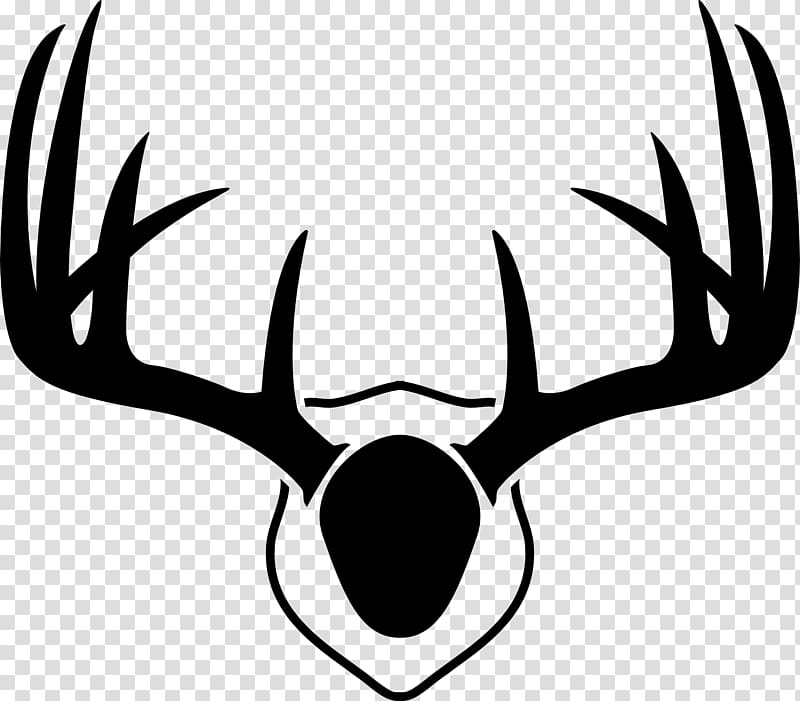 how to draw deer antlers jayande how to draw antlers on a deer to deer draw how antlers