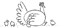 how to draw hen step by step hen drawing at getdrawings free download to hen how draw step by step