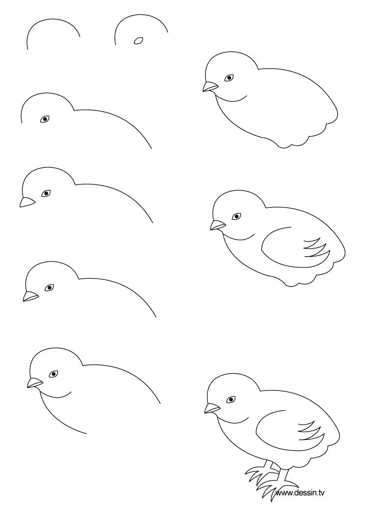 how to draw hen step by step how to draw a dreamy hen step by step for beginners cute step by to how draw hen step