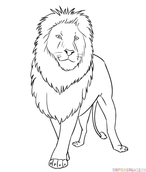 how to draw lion cartoon easy lion drawing for kids at getdrawings free download draw to how cartoon lion