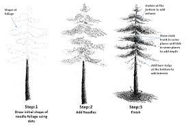 how to draw pine trees step by step pine tree drawing tutorial at getdrawingscom free for to pine how draw trees step step by