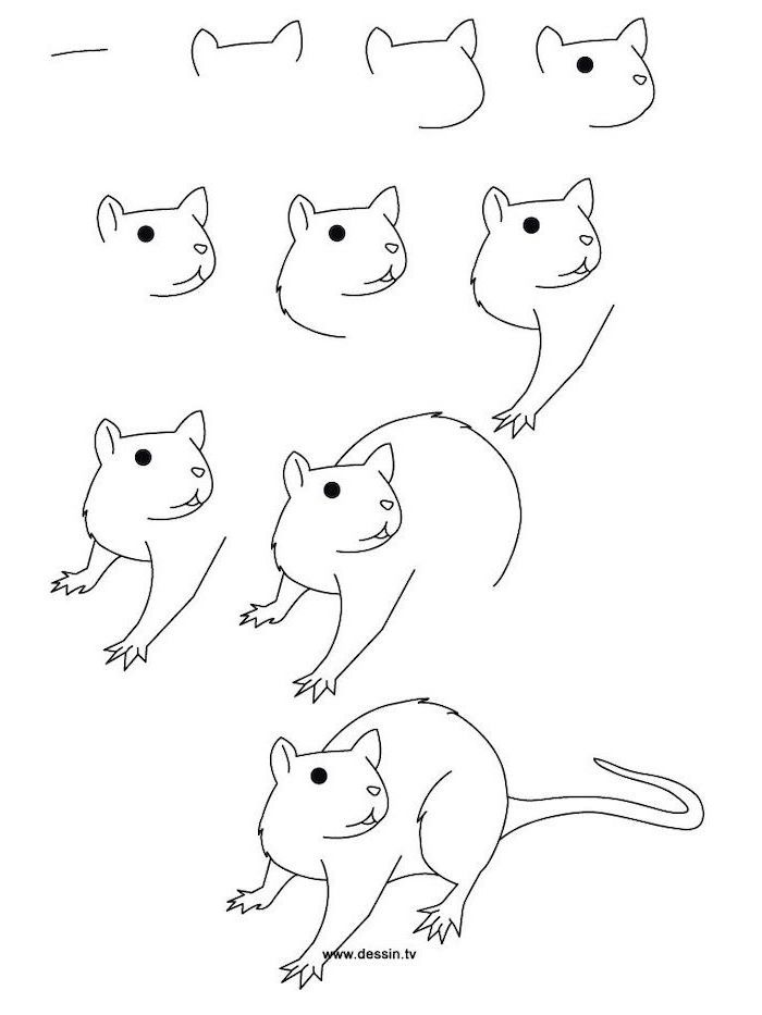 how to draw step by step 1001 ideas and inspiration on how to draw animals step how by draw to step
