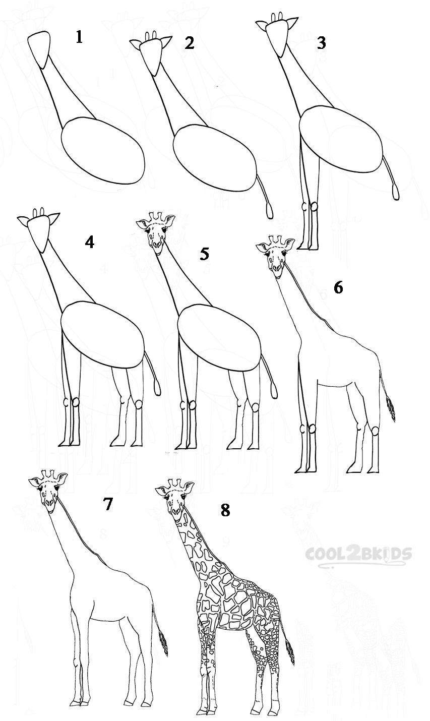 how to draw step by step how to draw a giraffe step by step pictures cool2bkids to step by step draw how