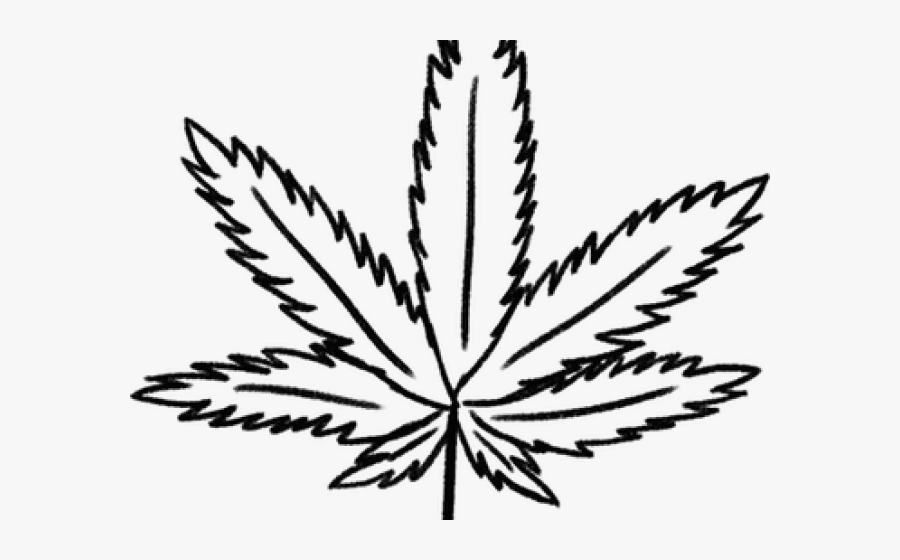 how to draw weed leaf cannabis drawing leaf wireframe marijuana hd png draw to leaf weed how
