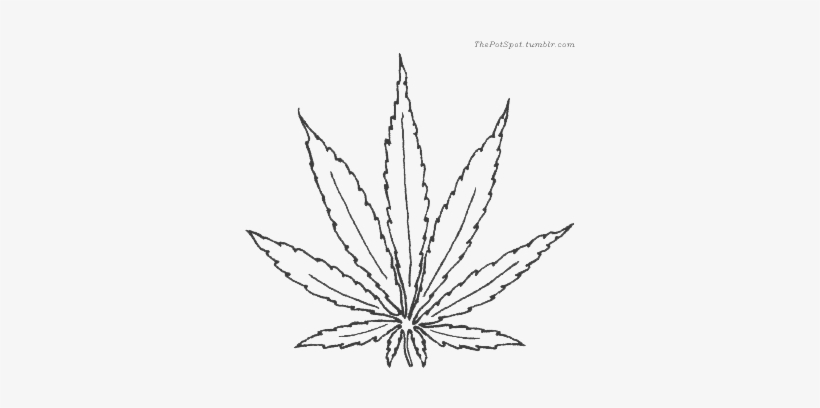 how to draw weed leaf cannabis plant vector at getdrawings free download leaf draw how weed to