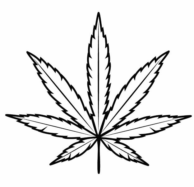how to draw weed leaf weed leaf drawing at getdrawingscom free for personal how to draw weed leaf