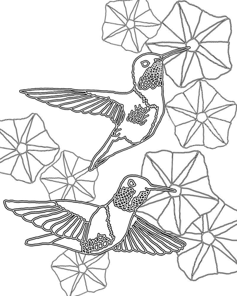 hummingbird pictures to color sweetness meditations free hummingbird coloring pages hummingbird pictures to color