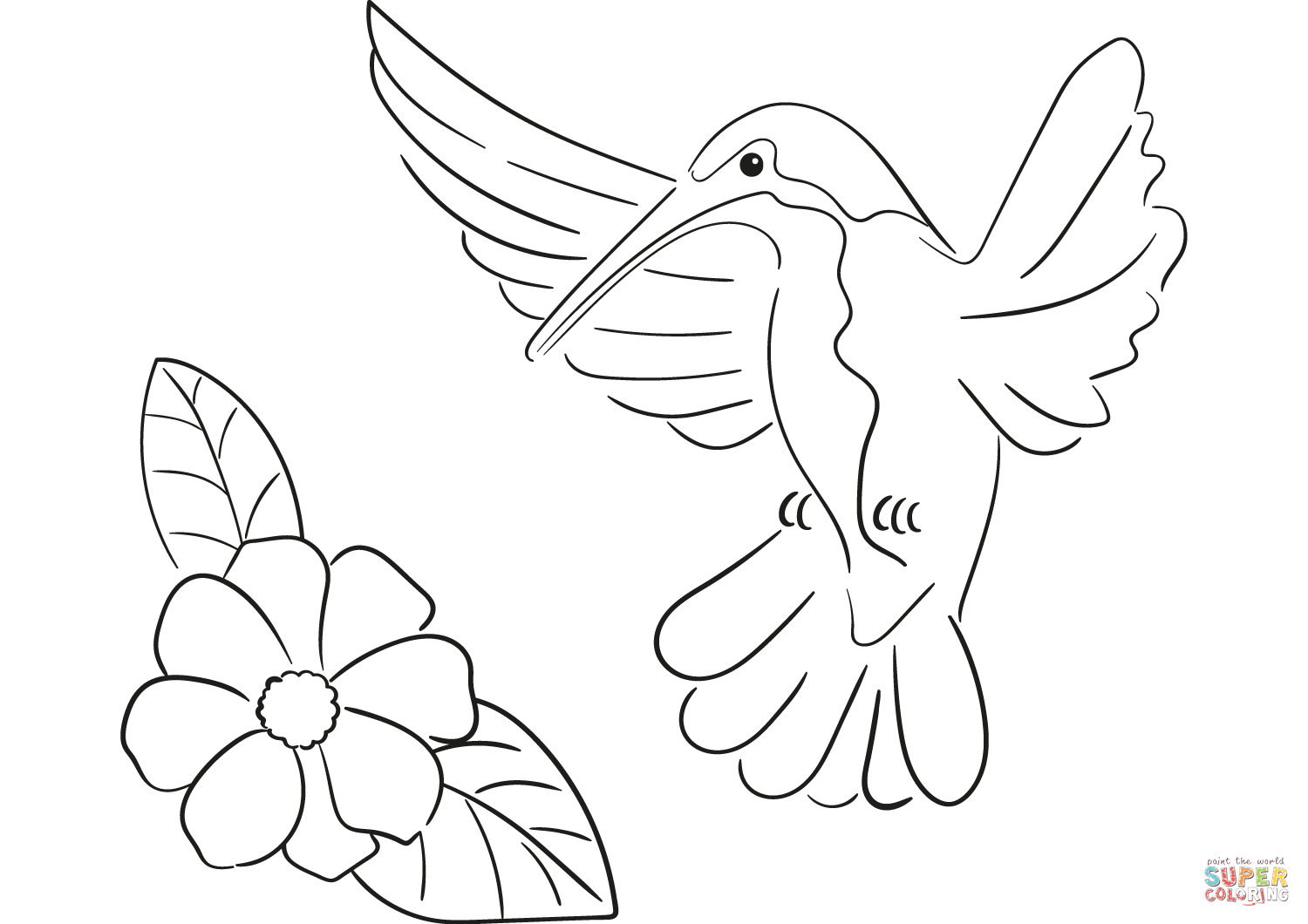 hummingbird pictures to color xantus hummingbird coloring page kids play color color pictures hummingbird to