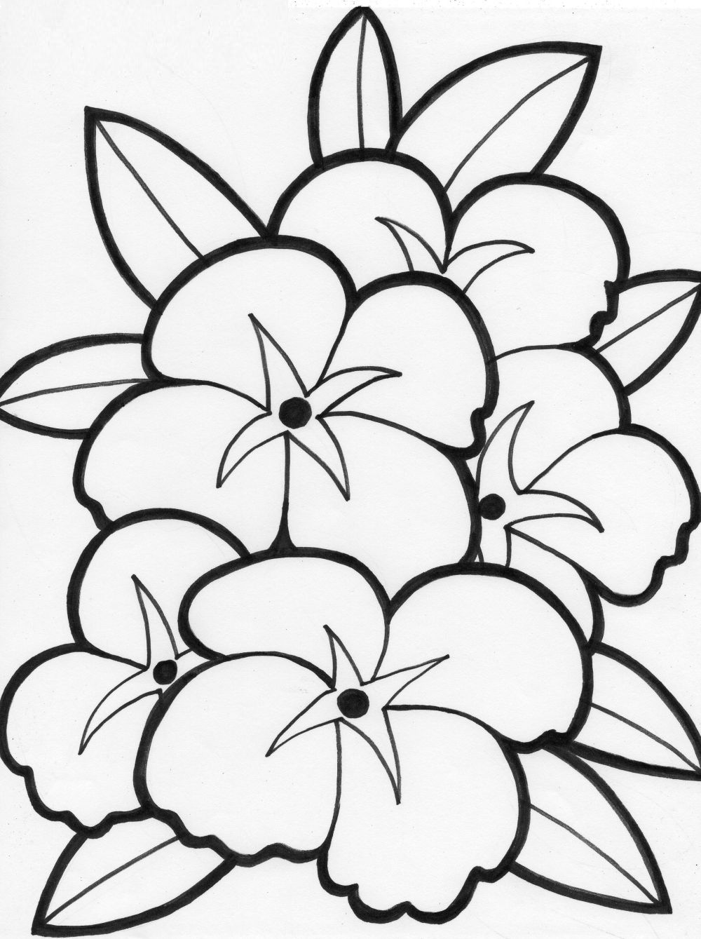 images of flowers to color free printable flower coloring pages for kids best to images of flowers color