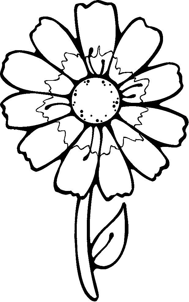 images of flowers to color free rainforest coloring pages free coloring pages images flowers color of to