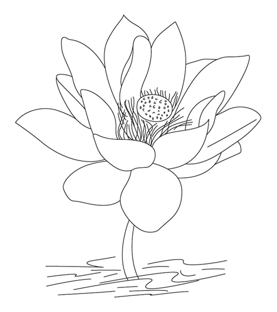 indian coloring page top 10 free printable india coloring pages online coloring page indian