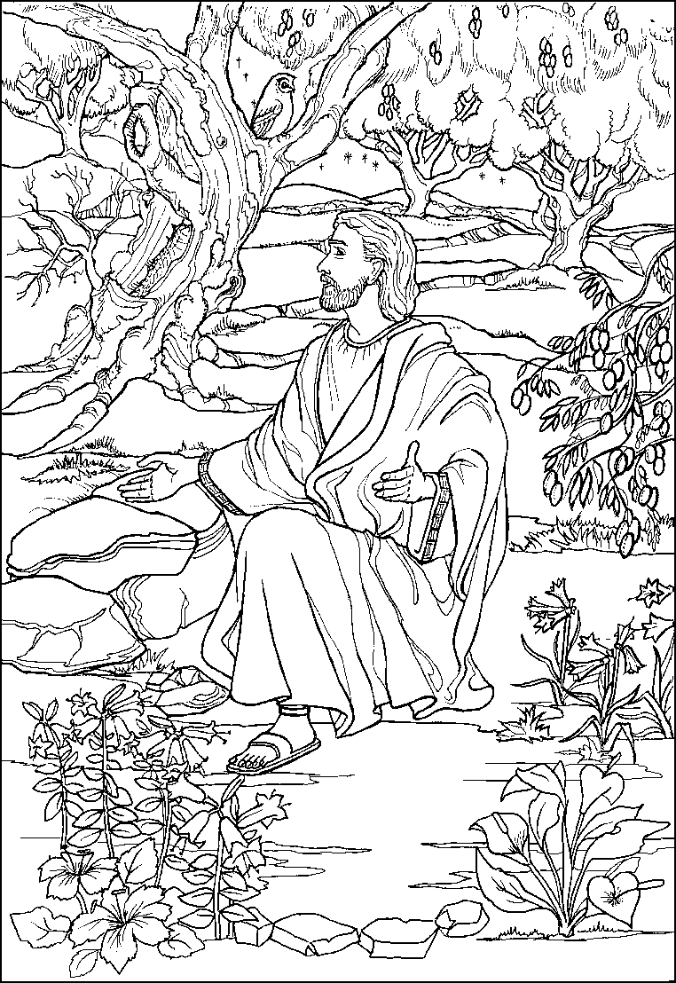 jesus praying in the garden of gethsemane coloring page 8 best images about bible garden of gethsemane on coloring of the gethsemane page jesus praying garden in