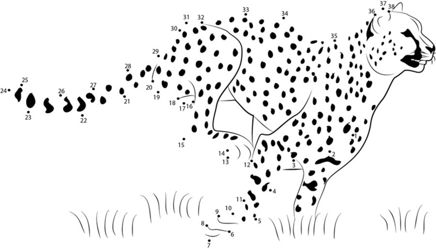 join the dots animals 100 free printable animal dot to dot activity worksheets join animals the dots
