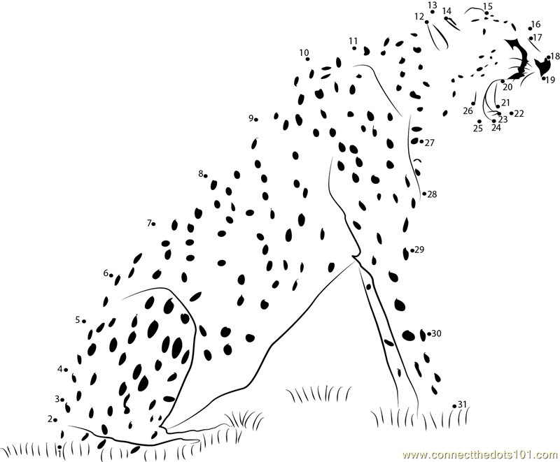 join the dots animals connect the dots animals the animals dots join