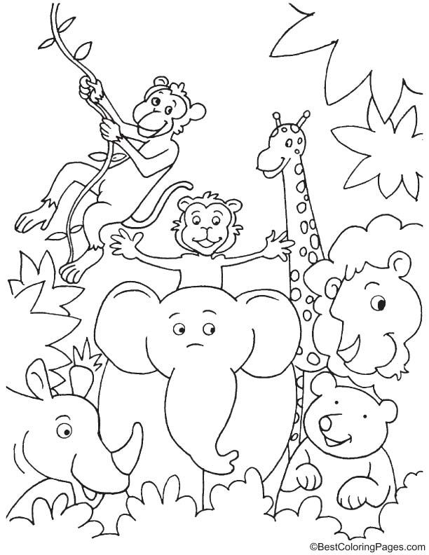 jungle animal coloring pages fun in jungle coloring page safari animals jungle pages animal coloring jungle