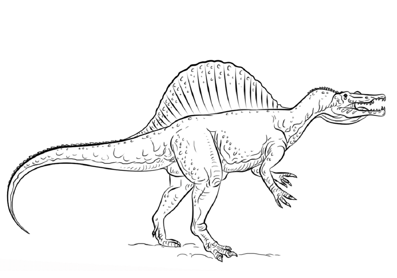 jurassic park dinosaur coloring pages jurassic park t rex drawing at getdrawings free download park dinosaur coloring pages jurassic