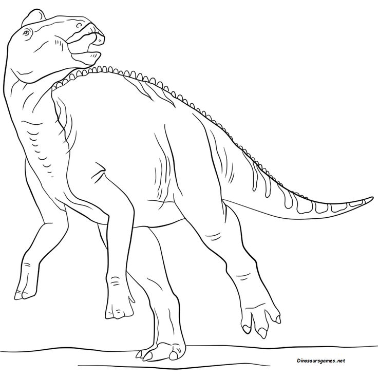 jurassic park dinosaur coloring pages spinosaurus coloring download spinosaurus coloring for jurassic coloring pages park dinosaur