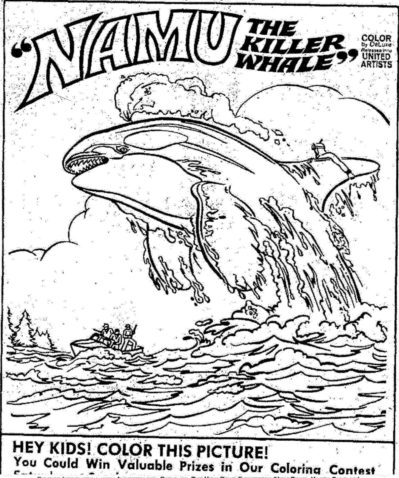 killer whale coloring page orca whale coloring page coloring home page coloring whale killer