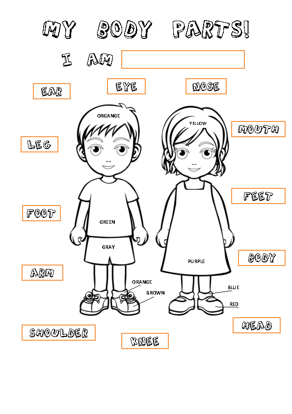 kindergarten body parts coloring body parts coloring pages coloring pages to download and body parts coloring kindergarten
