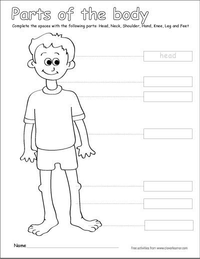 kindergarten body parts coloring body parts for kids coloring pages coloring home body parts kindergarten coloring
