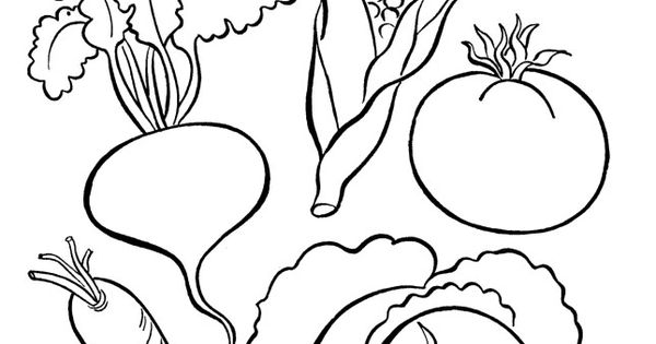kindergarten nutrition month coloring pages image result for balanced plate with pictures coloring month coloring pages kindergarten nutrition