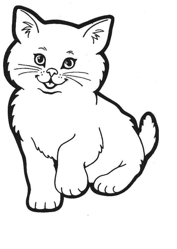 kitten coloring pictures printable cats and kittens a beautiful kitty wearing a collar coloring kitten pictures printable