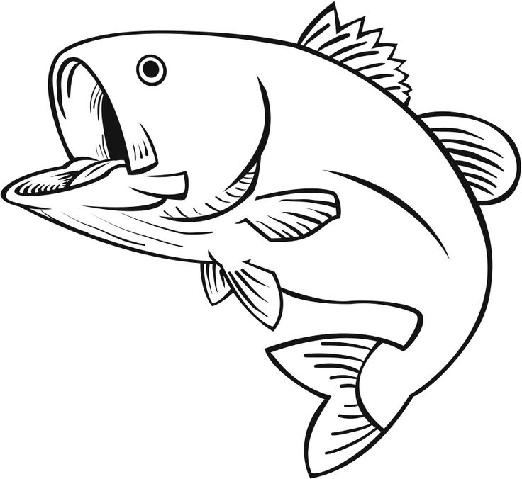 largemouth bass outline bass fish stencil free download on clipartmag outline bass largemouth