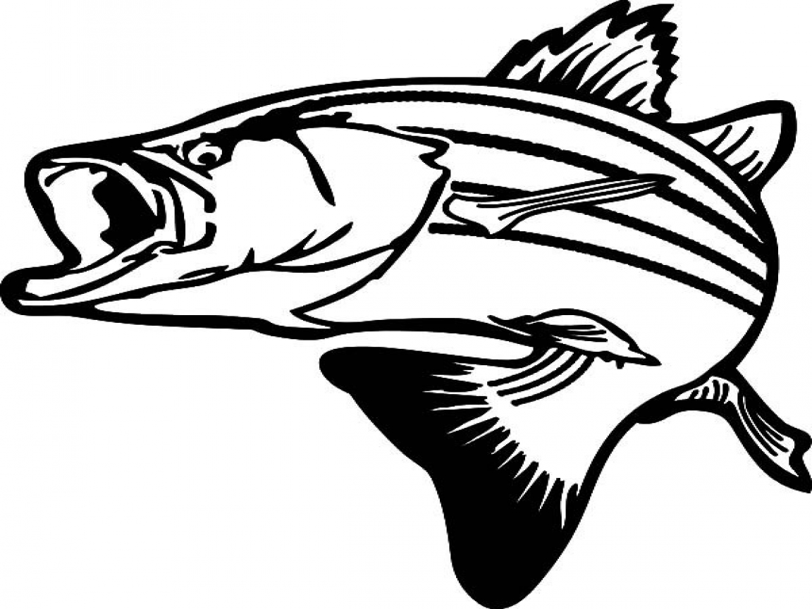 largemouth bass outline free bass outline cliparts download free clip art free bass outline largemouth