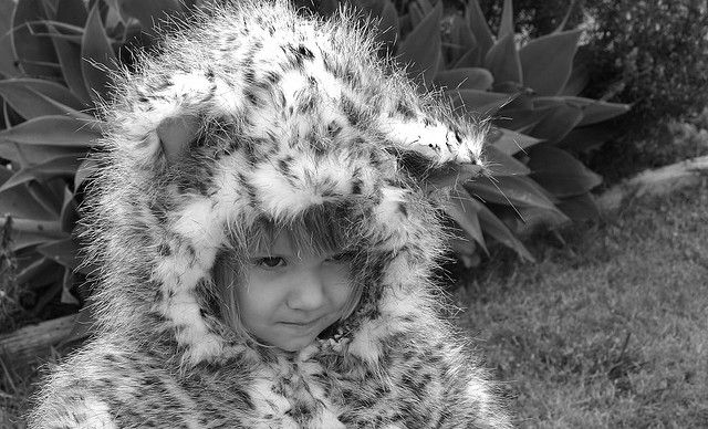 leopard pictures for kids free leopard coloring pages pictures leopard kids for