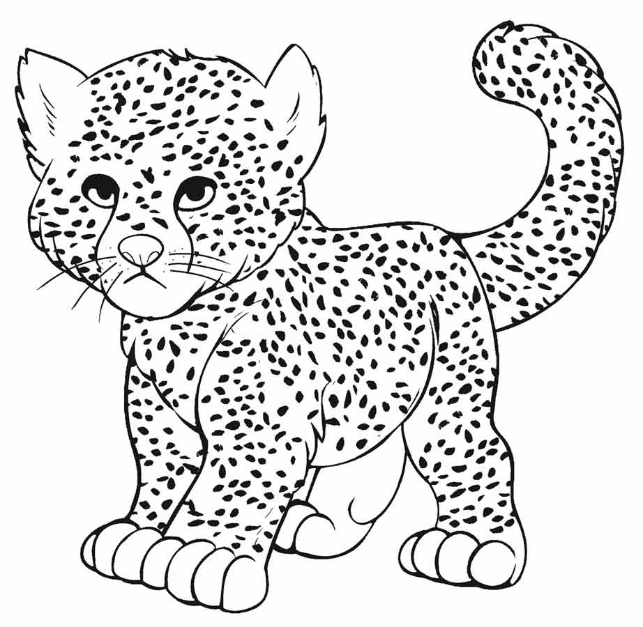 leopard pictures for kids free printable leopard coloring pages leopard coloring leopard pictures kids for