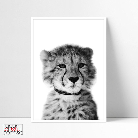 leopard pictures for kids leopard drawing at getdrawings free download kids for pictures leopard