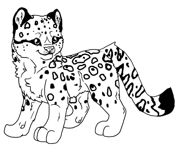 leopard pictures for kids the leopard a4jpg 595842 pixels coloring sheets pictures leopard for kids