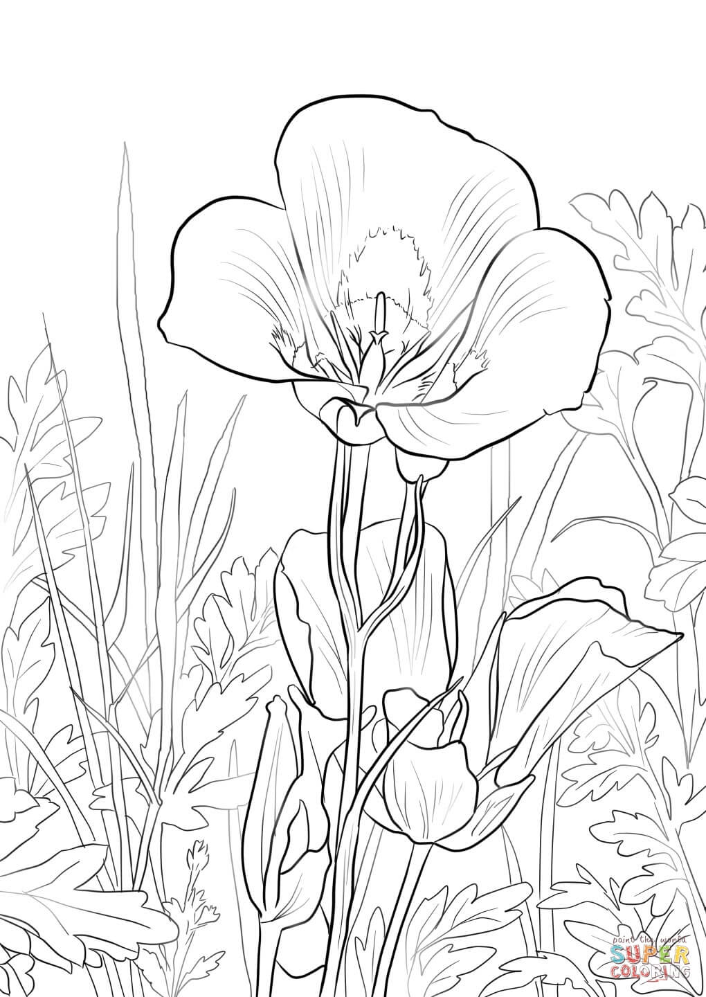 lily flower coloring pages lily of the valley coloring pages download and print lily coloring flower pages lily