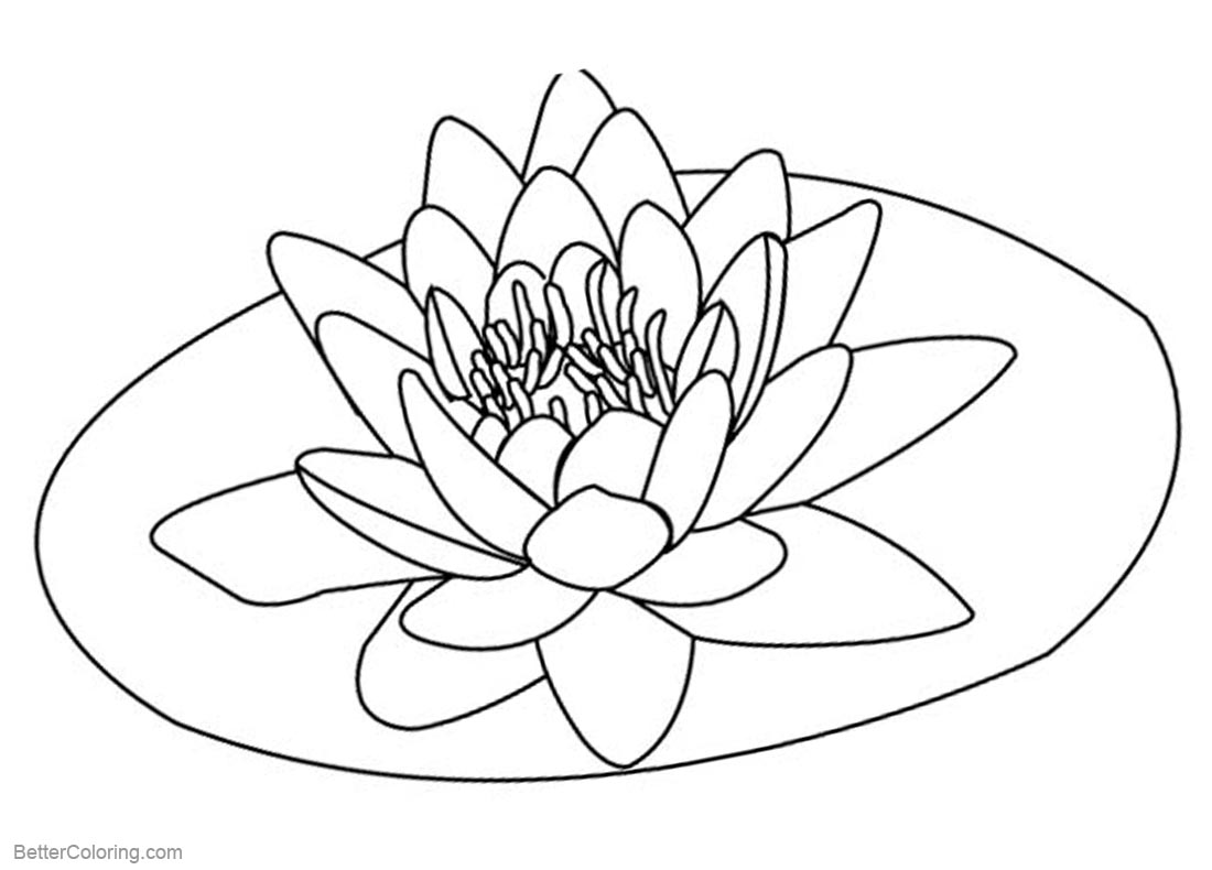 lily pad coloring page free lily pad template download free clip art free clip coloring pad lily page