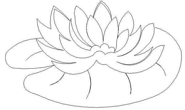 lily pad coloring page lily pads coloring pages coloring home page coloring pad lily